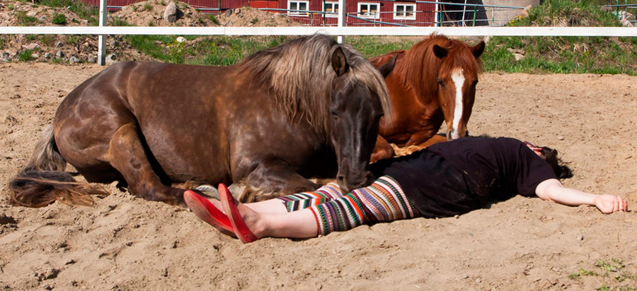 "Back in the days: A little nap with the ponies during a community art project ""LAUMA"" (eng. Herd), 2014."